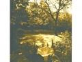 IRENA MARTENS                                                        Pigment Print :Boxed Portfolio %22Thornwillow Gardens%22 2
